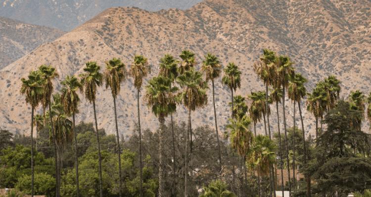 Canyon City Azusa, California