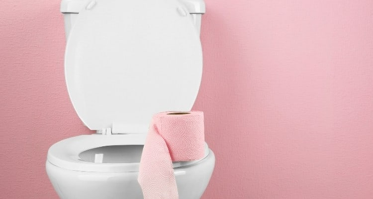 toilet pink toilet paper and pink wallpaper
